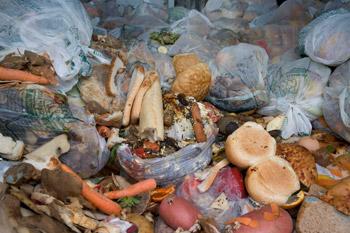 Food waste - image courtesy of WRAP