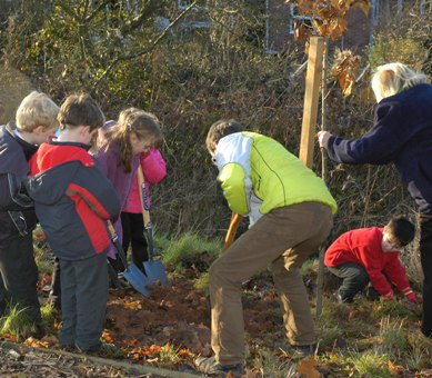 Tree planting by Children, courtesy the Tree Council